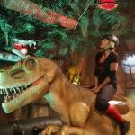photo-Vitaa tente de dompter le Rodéo-Dino