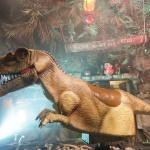 photo-L'épreuve du Rodéo-Dino