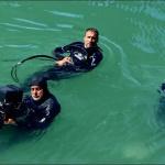 photo-Les cadreurs sous-marins en 2018