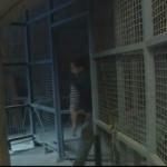 photo-La fauverie (cellules 005 006) en 2007